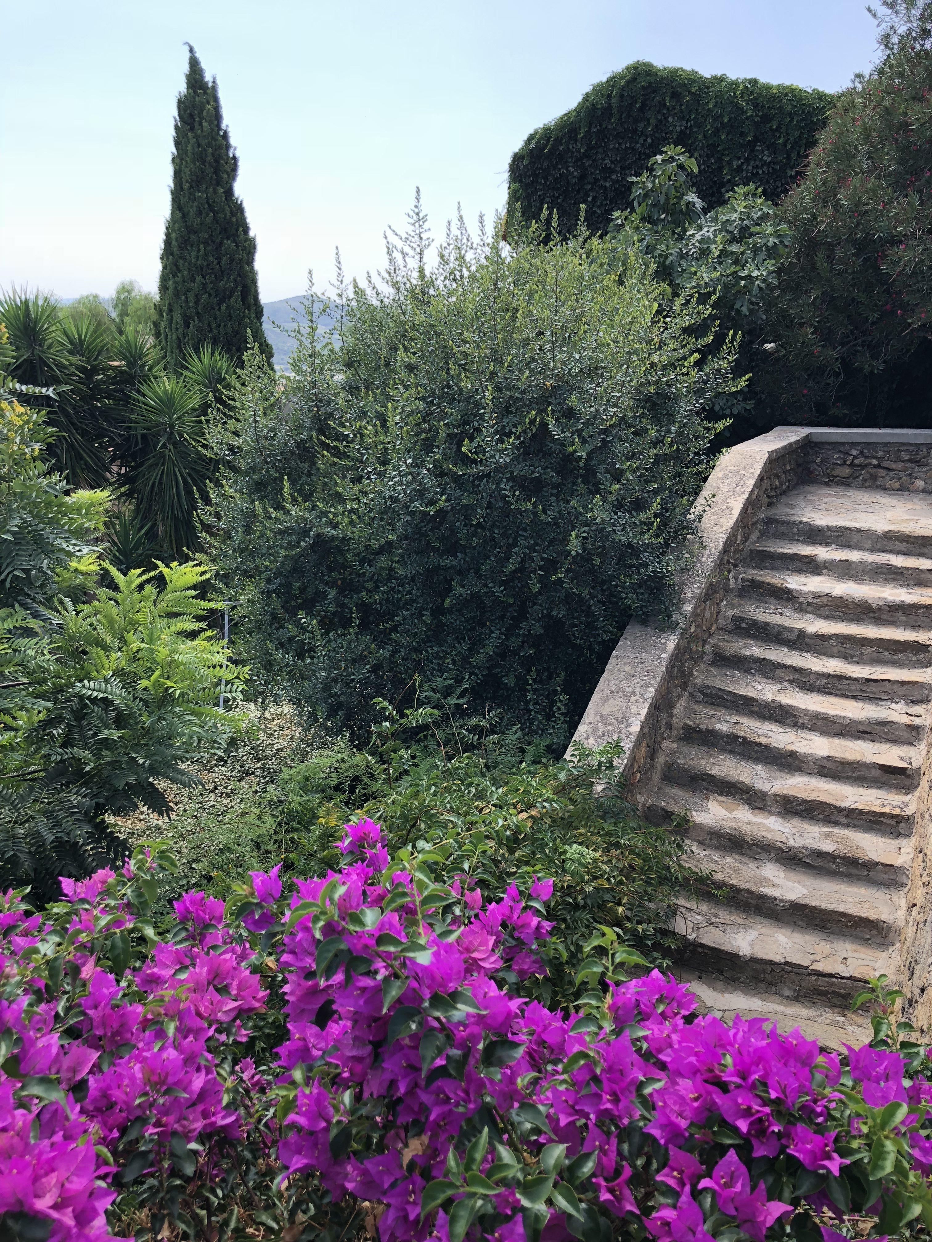 Escalier Bormes les mimosas