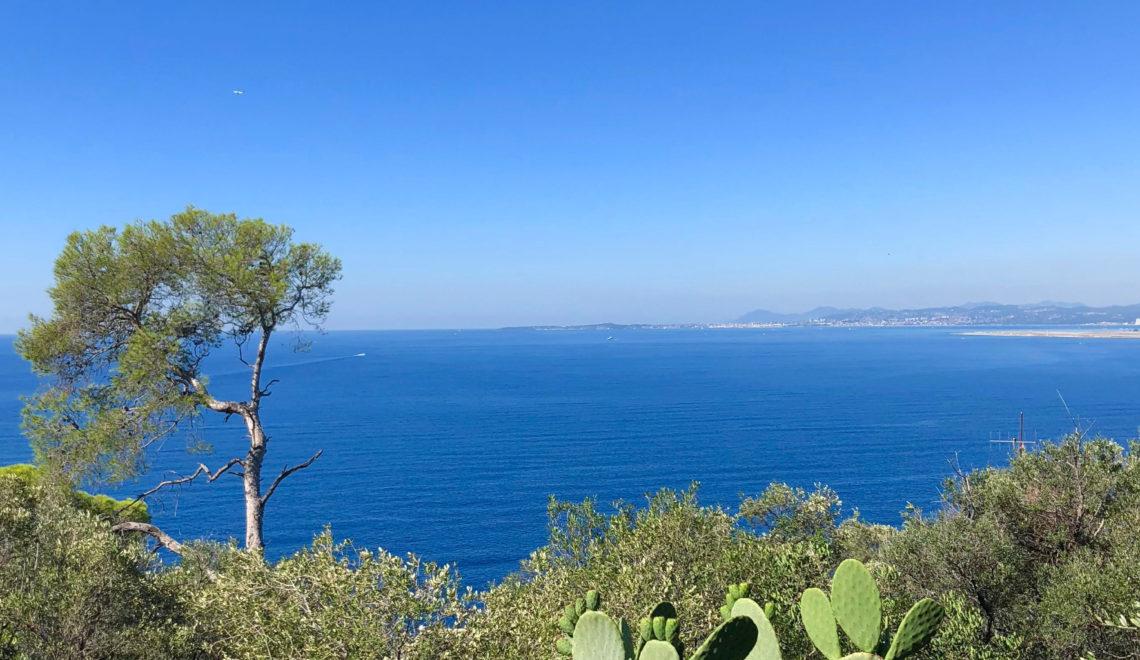 Parc du Mont Boron à Nice, une promenade de 30 minutes avec vue mer